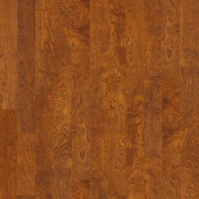 Shaw Floors Shaw Hardwoods Brooksville Burnside 00627_SW492