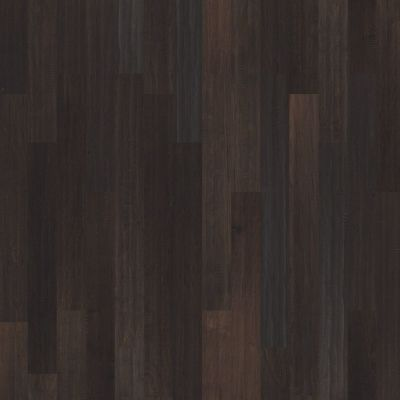 Shaw Floors Shaw Hardwoods Expedition Maple 4 Legacy 00953_SW507