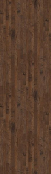 Shaw Floors Shaw Hardwoods Bennington Maple Course 00326_SW511