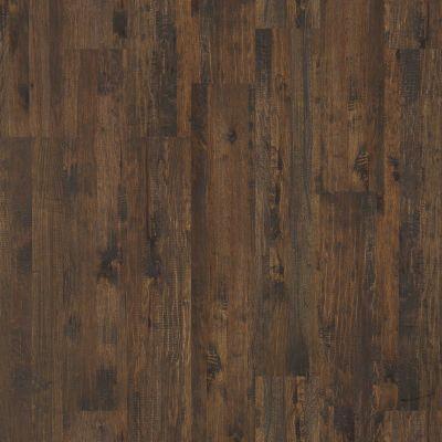 Shaw Floors Shaw Hardwoods Rio Grande Waldron Trail 00421_SW513