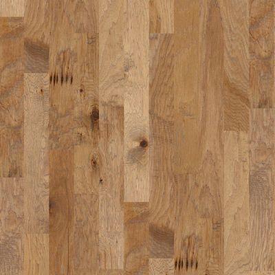 Shaw Floors Shaw Hardwoods Sequoia Hickory 5 Bravo 02002_SW539