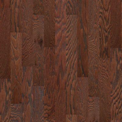 Shaw Floors Shaw Hardwoods Albright Oak 5 Hazelnut 00874_SW582