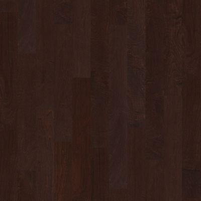 Shaw Floors Shaw Hardwoods Ocala Conway 00698_SW590