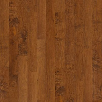Shaw Floors Shaw Hardwoods Coral Springs Surfside 00460_SW591