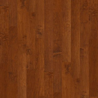 Shaw Floors Shaw Hardwoods Coral Springs Burnside 00627_SW591