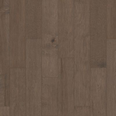 Shaw Floors Shaw Hardwoods Coral Springs Windsurf 05034_SW591