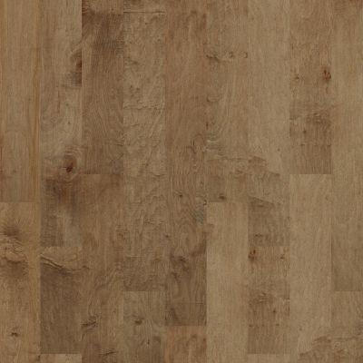 Shaw Floors Shaw Hardwoods Pacific Grove Buckskin 02005_SW594