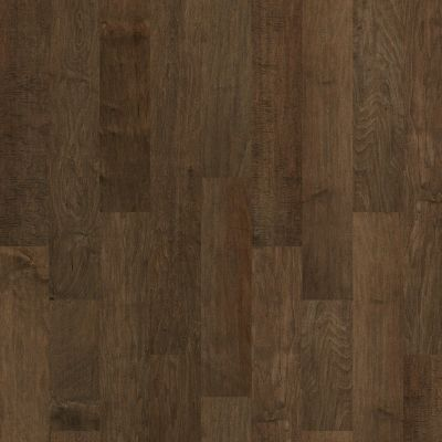 Shaw Floors Shaw Hardwoods Pacific Grove Bison 03000_SW594