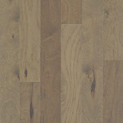 Shaw Floors Repel Hardwood High Plains 6 3/8 Jute 02052_SW712