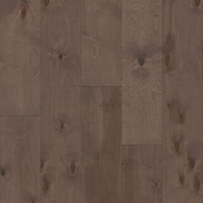 Shaw Floors Repel Hardwood Celestial Cordova 07098_SW744