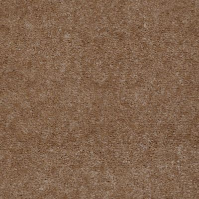 Shaw Floors SFA Royal Classic Soft Mink 98781_T1898