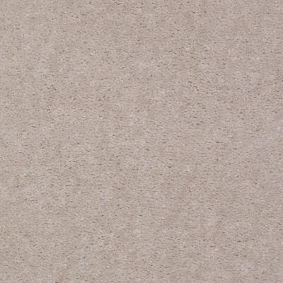 Shaw Floors SFA Night Quest Sand Pebble 99171_T1899