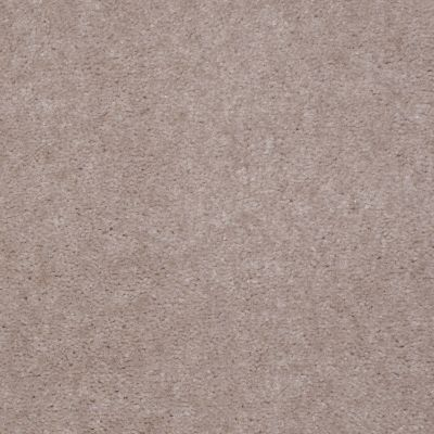 Shaw Floors SFA Night Quest Taupe Tone 99172_T1899