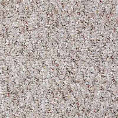 Shaw Floors Rare Blend 12 Canyon 00700_T3106