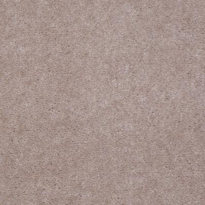 Shaw Floors Carpet Max Sugarbush Smokestone 38218_T8238
