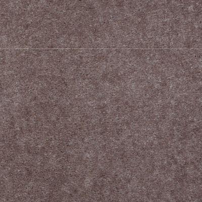 Shaw Floors Carpet Max Sugarbush Buckskin 38277_T8238