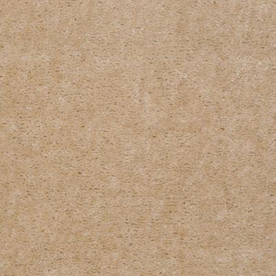 Shaw Floors Carpet Max Sugarbush Tusk 38617_T8238