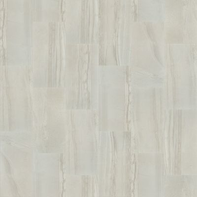 Shaw Floors Home Fn Gold Ceramic Pantheon 18×36 Shell 00100_TG04A