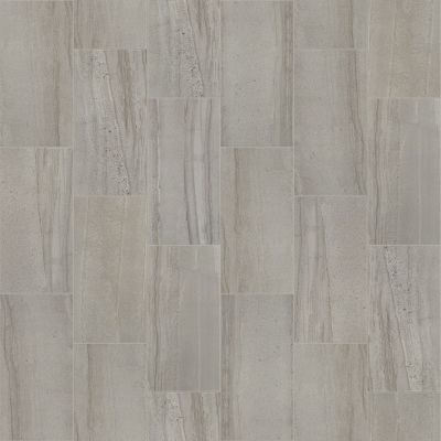 Shaw Floors Home Fn Gold Ceramic Pantheon 12×24 Matte Pewter 00500_TG06A