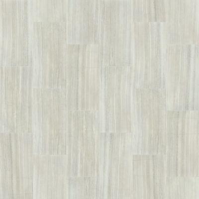 Shaw Floors Home Fn Gold Ceramic Marvel 16×32 Matte Ash 00550_TG06C