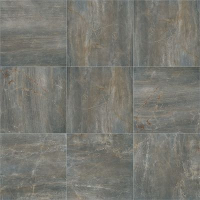 Shaw Floors Unspecified Gunmetal 00500_TG72E