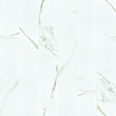 Shaw Floors Home Fn Gold Ceramic Stonehenge 12×24 Polish Calacatta 00121_TGK03