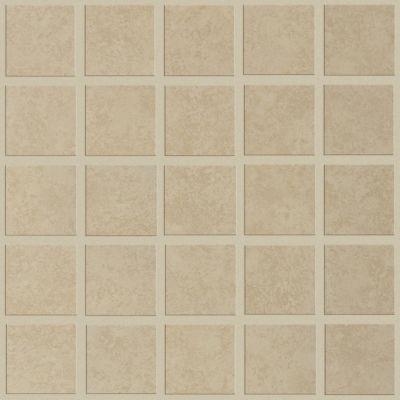 Shaw Floors Home Fn Gold Ceramic Contempo Mosaic Tabby 00200_TGM38