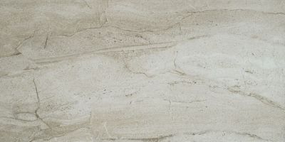 Shaw Floors Home Fn Gold Ceramic Antiquity 16×32 Palladium 00200_TGN56