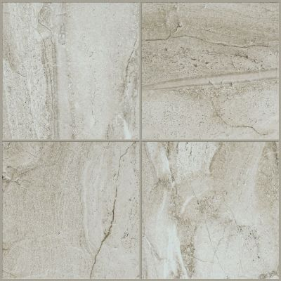 Shaw Floors Home Fn Gold Ceramic Antiquity 8×8 Palladium 00200_TGN57
