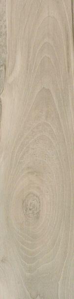 Shaw Floors Home Fn Gold Ceramic Traveler 6×24 Taupe 00510_TGN64