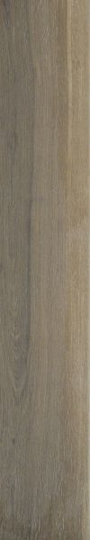 Shaw Floors Home Fn Gold Ceramic Revolution 6×36 Walnut 00700_TGN66