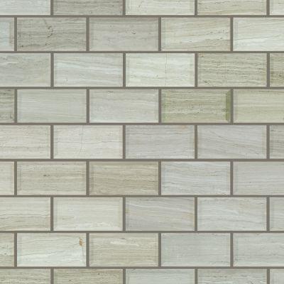 Shaw Floors Home Fn Gold Ceramic Estate 2×4 Beveled Edge Mosaic Rockwood 00500_TGN89