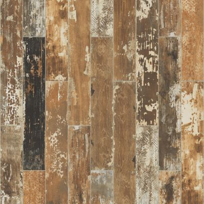Shaw Floors Toll Brothers Ceramics Sleepy Hollow 6×36 Poplar 00670_TL26B