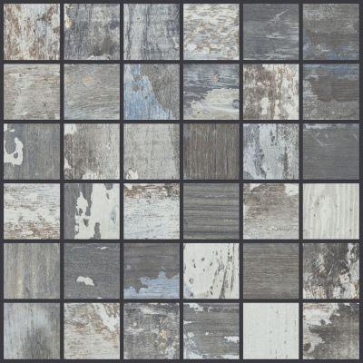 Shaw Floors Toll Brothers Ceramics Sleepy Hollow Mosaic Hickory 00540_TL48C