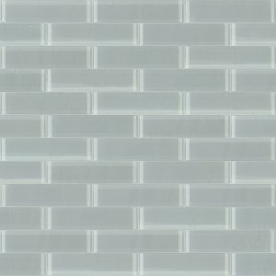 Shaw Floors Toll Brothers Ceramics Principal 3×12 Glass Tile 2 Shadow 00550_TL74B