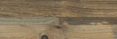 Shaw Floors Toll Brothers Ceramics Tide Water Os Mo Maya 00700_TL77C