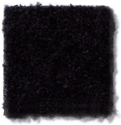 Shaw Floors Panama (s) Onyx 17502_TR017