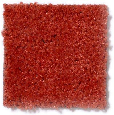 Shaw Floors Panama (s) Cinnamon 17600_TR017