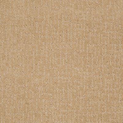Anderson Tuftex Value Collections Ts109 Golden Fleece 00263_TS109