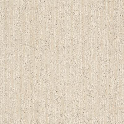 Anderson Tuftex Value Collections Ts148 Latte Froth 00111_TS148