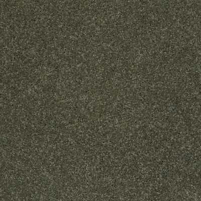 Anderson Tuftex Value Collections Ts247 Bay Leaf 00345_TS247