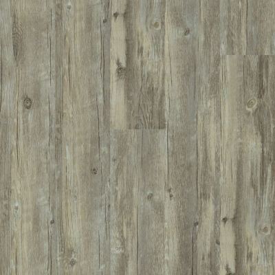 Shaw Floors Vinyl Property Solutions Como Plank Roma 00507_VE170