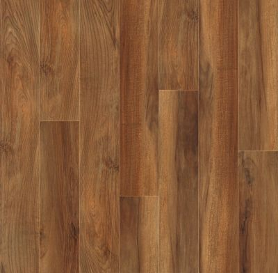 Shaw Floors Vinyl Property Solutions Como Plank Venna 00820_VE170