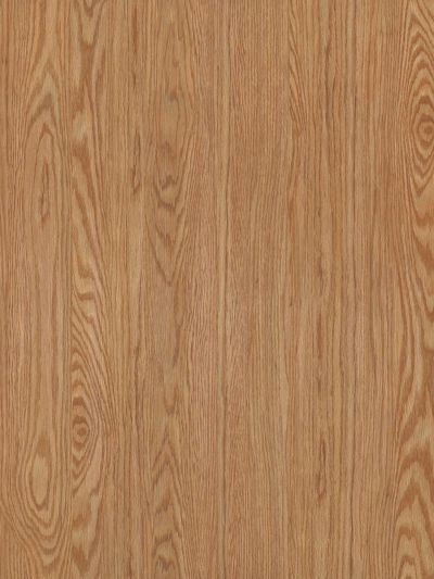 Shaw Floors Vinyl Property Solutions Cameron Pl Click Dutch 00220_VE181