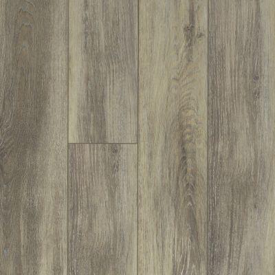 Shaw Floors Resilient Property Solutions Lazio Plus Delfino 00577_VE230