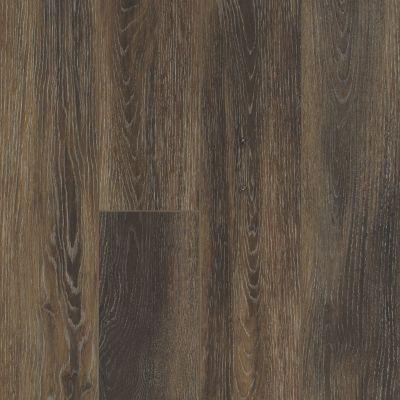 Shaw Floors Resilient Property Solutions Lazio Plus Cacao 00779_VE230