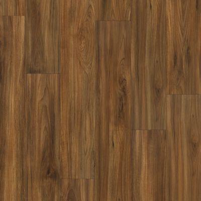 Shaw Floors Resilient Property Solutions Presto 306c Burmese Teak 00604_VE245