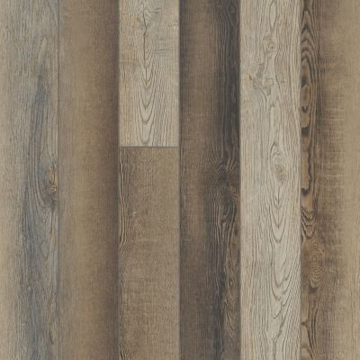 Shaw Floors Resilient Property Solutions Resolute 5″ Plus Brush Oak 07033_VE277