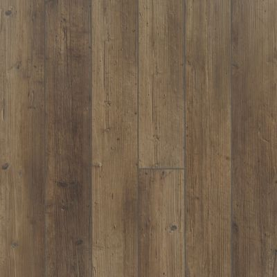 Shaw Floors Resilient Property Solutions Resolute 5″ Plus Tactile Pine 07038_VE277