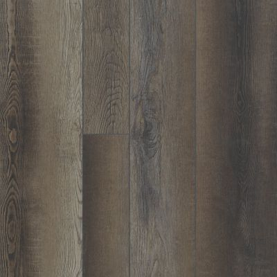 Shaw Floors Resilient Property Solutions Resolute Mix Plus Blackfill Oak 00909_VE279